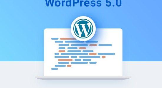 WordPress 5.0: Qué hay de nuevo